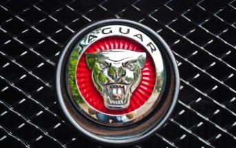 Jaguar Returns to Motorsport